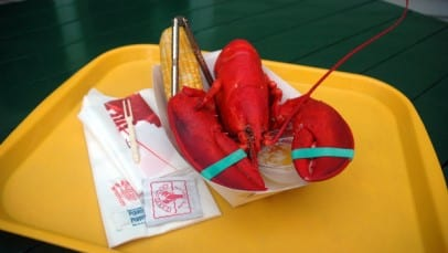 Lobster on Tray